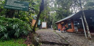 Wisata Alam Gunung Gede Pangrango Diminati Masyarakat Untuk Hilangkan Stres Saat Pandemi Covid-19