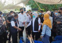 Gubernur khofifah saat kunjungan ke Pelabuhan Perikanan Pantai Mayangan Kota Probolinggo