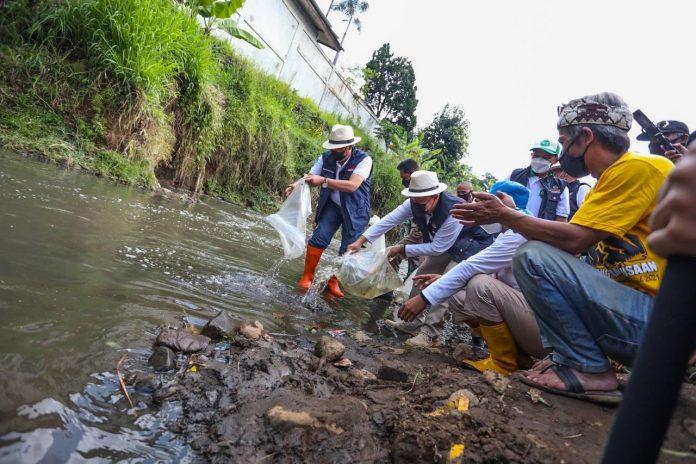 Kembalikan ekosistem, Walikota Bandung, Oded M. Danial menebar 3.600 ikan native dan menanam pohon endemik di bantaran Sungai Cibeureum